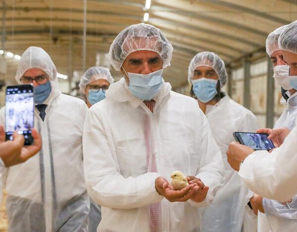 Governo quer Madeira autossuficiente em termos de produção alimentar