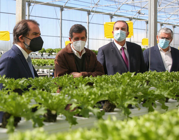 Albuquerque destaca nova agricultura madeirense.