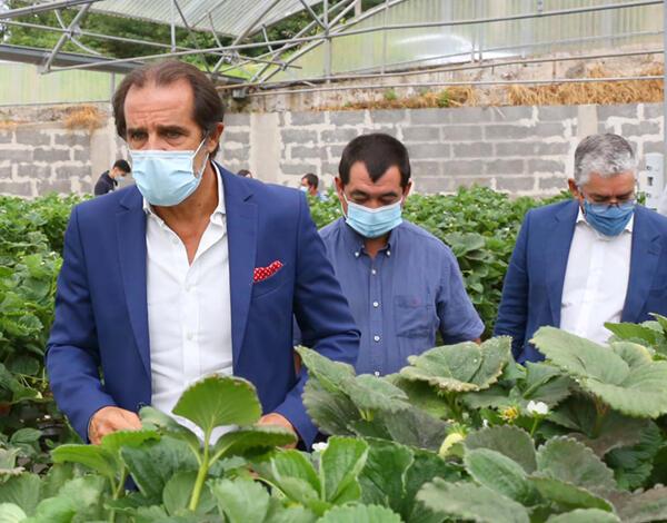 Governo prossegue aposta na autossuficiência alimentar