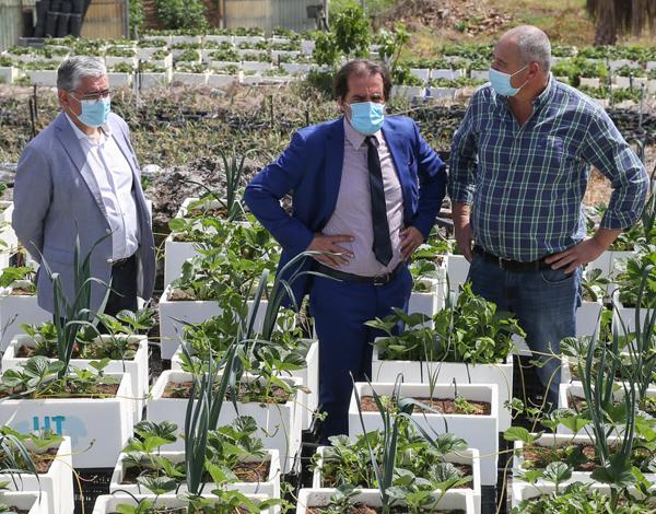 Agricultura madeirense com formação e apoiada em novas tecnologias