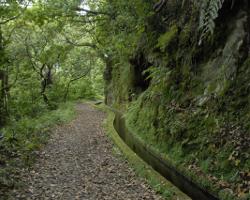 Plano de Gestão da Região Hidrográfica do Arquipélago da Madeira: 2016-2021