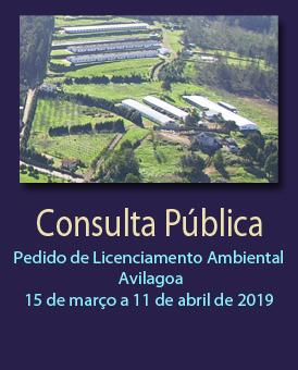 Consulta Pública: Pedido de Licenciamento Ambiental - Avilagoa