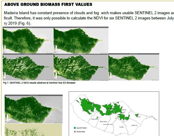 DROTA leva Biomassa da Laurissilva até Living Planet Symposium 2019