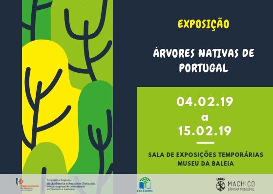 Exposição | Árvores Nativas de Portugal | Machico | Museu da Baleia
