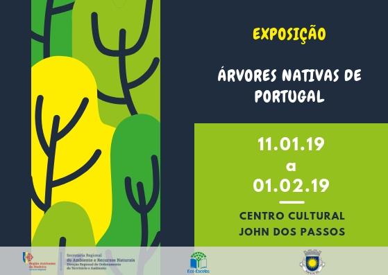 Exposição | Árvores Nativas de Portugal | Ponta do Sol