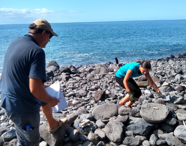 Projeto OceanLit está no terreno