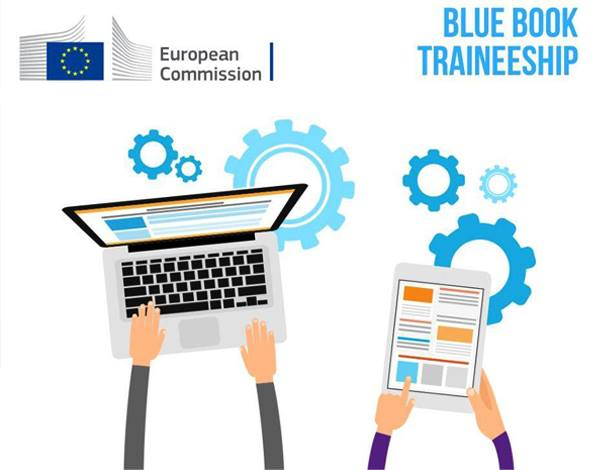 """Blue Book Traineeship"""