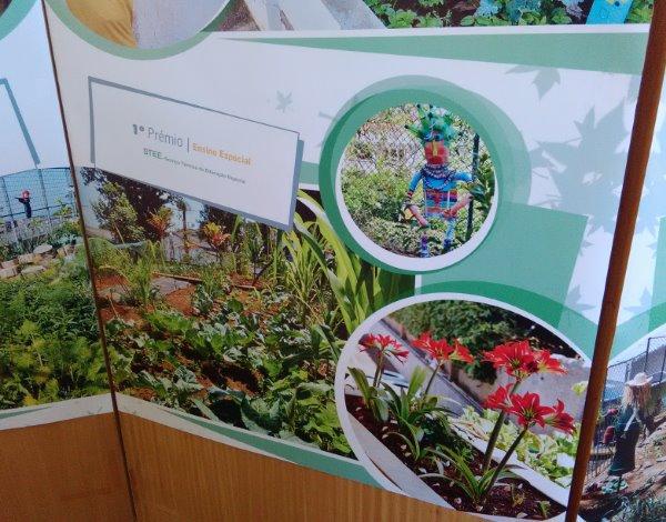 Funchal Premiou Escolas Com os Melhores Jardins do Concelho