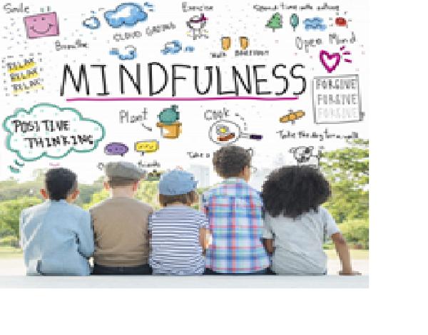 Literacias do Mindfulness e práticas pedagógicas