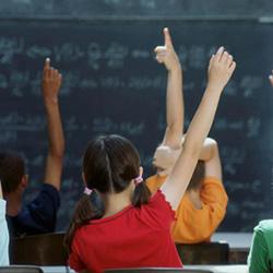 Continuidade de funções dos docentes dos quadros de zona pedagógica e mobilidades por proposta do orgão de gestão e filhos menores ou gravidez