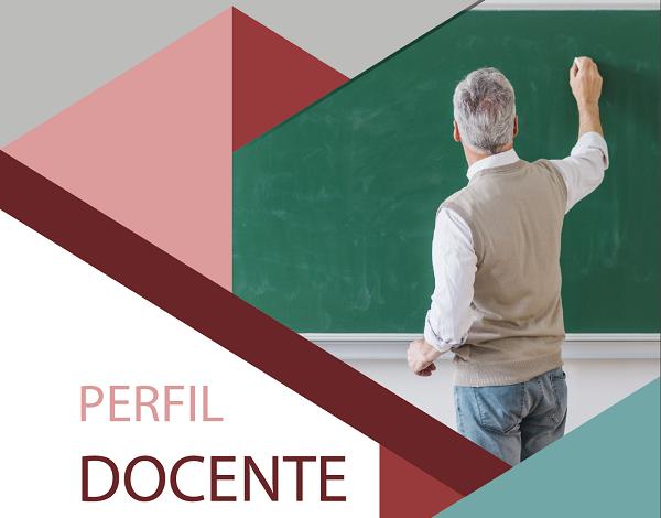 """Publicação """"Perfil do docente 2017/2018"""" RAM"""