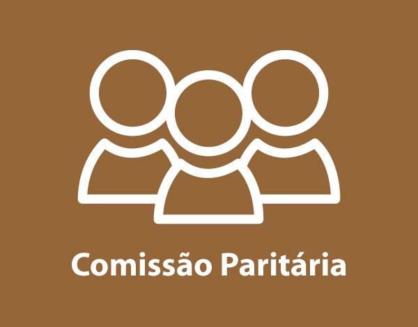 Comissão Paritária - Despacho de Constituição