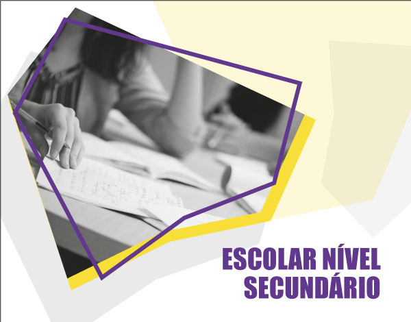 Educação e Formação de Adultos - Escolar Nível Secundário