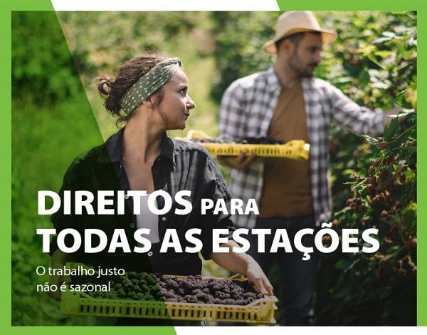 Direitos para todas as estações: A Autoridade Europeia do Trabalho apoia o trabalho justo para trabalhadores sazonais