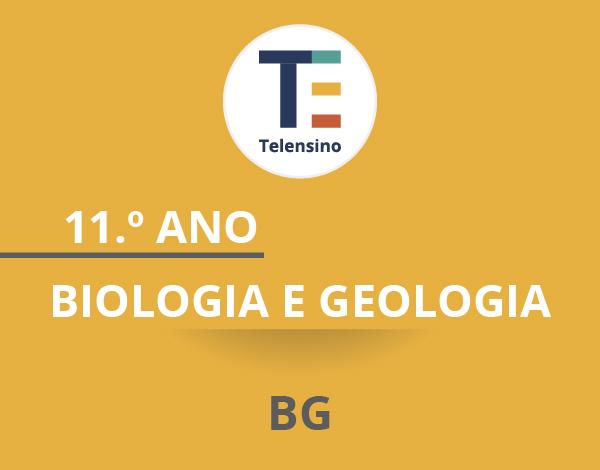 11.º Ano – Biologia e Geologia *   TELENSINO