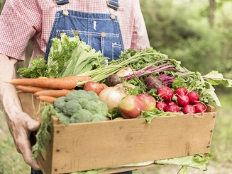 Mercado de Agricultura Biológica - alteração de local