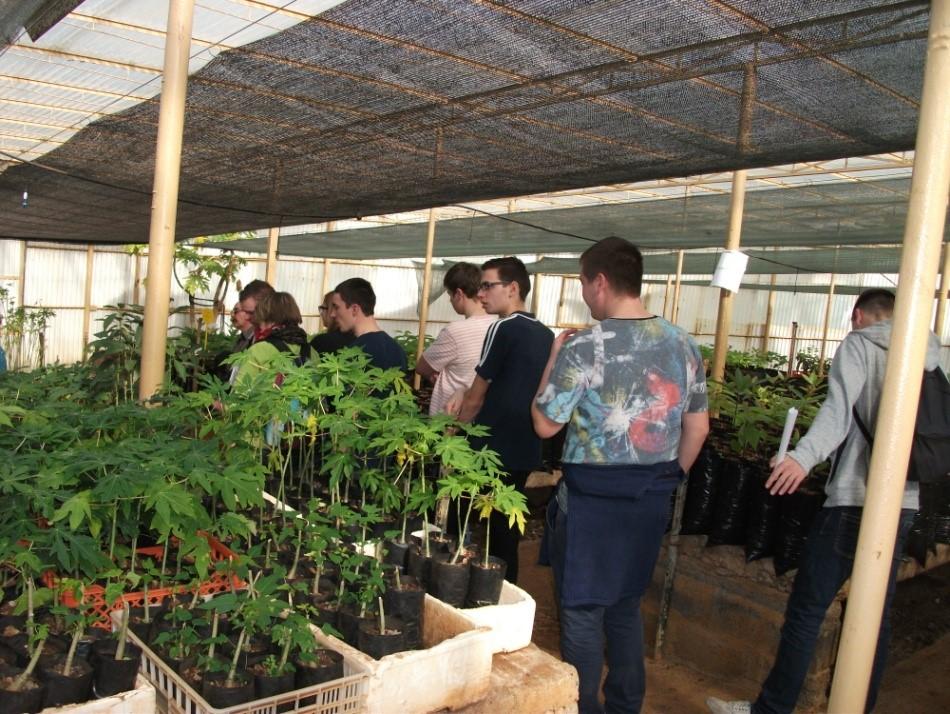Alunos de Escola de Agricultura Francesa visitaram Centro de Fruticultura Subtropical
