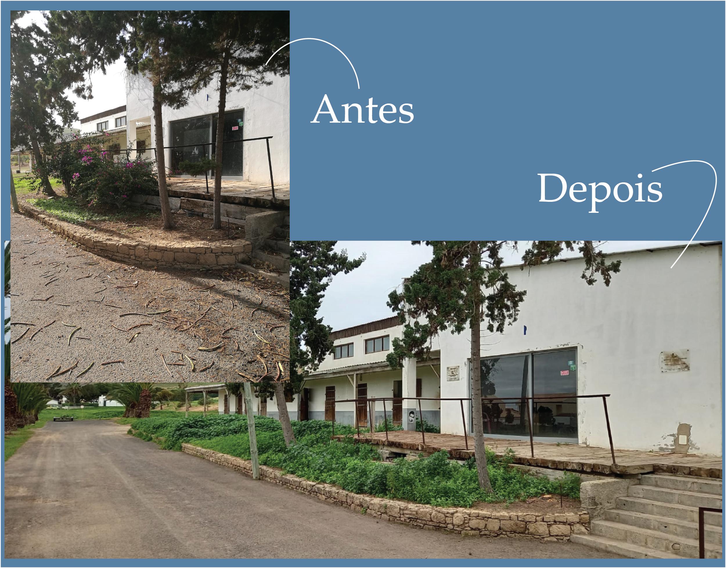 Limpeza Profunda do Centro Hípico do Porto Santo
