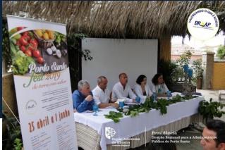 Relatório Porto Santo Fest 2019