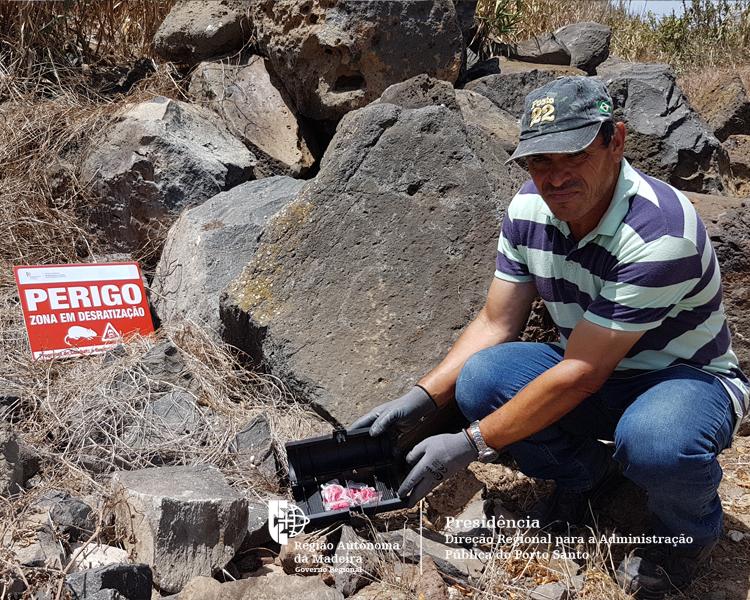 Campanha de desratização e controle de pragas no Porto Santo