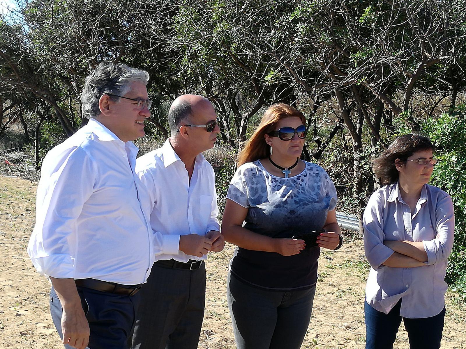 Governo Regional procede a desratização no Porto Santo