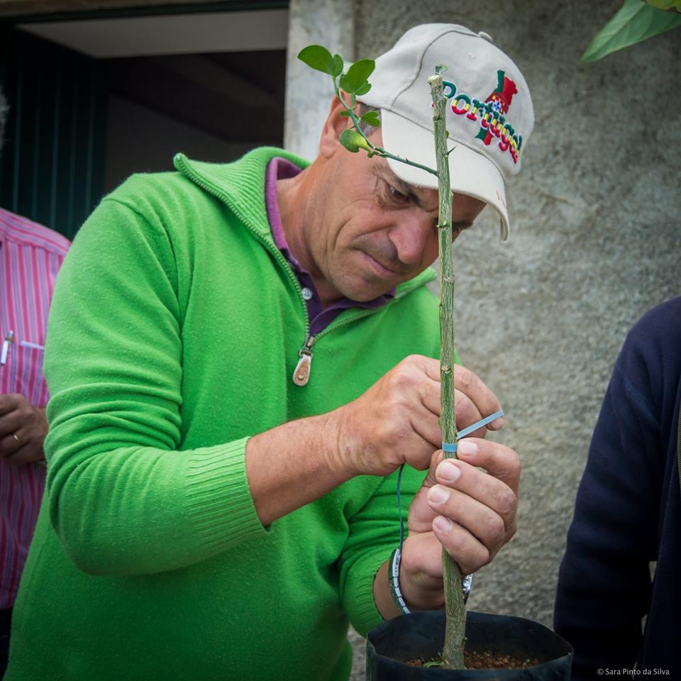 Demonstração de Podas e Enxertias em Fruteiras.