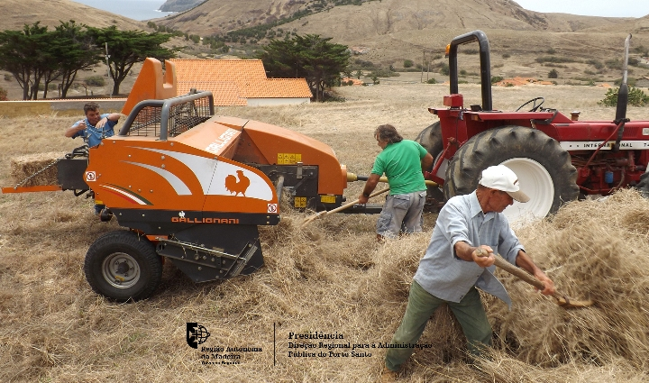 Novo equipamento de apoio aos produtores porto-santenses a funcionar desde o início do mês