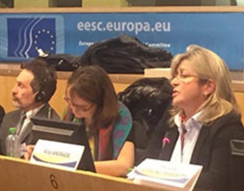 Madeira representada em Estrasburgo no Congresso dos Poderes Locais e Regionais do Conselho da Europa