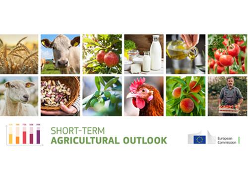 Agricultura: perspetivas a curto prazo da Comissão mostram resiliência do setor