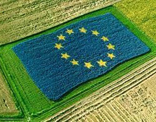 Consulta pública sobre o futuro da Política Agrícola Comum 2020