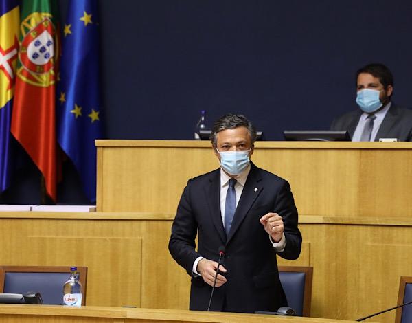 Madeira cria Provedor e dá mais um importante passo na defesa da causa animal