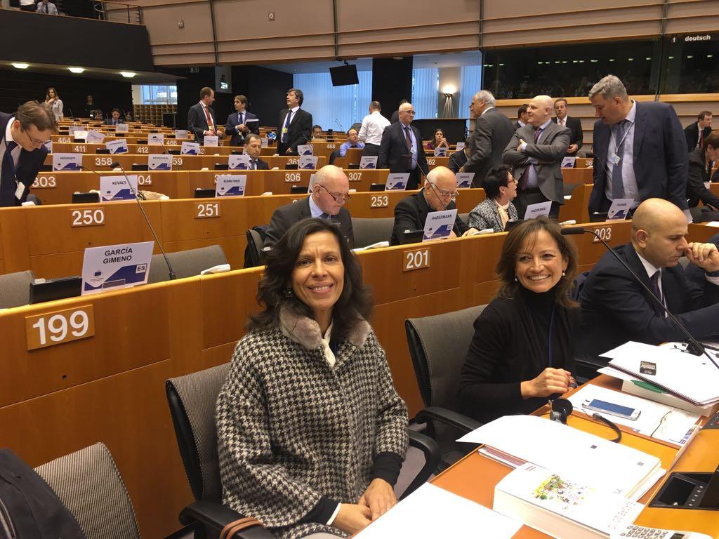 Governo Regional defende em Bruxelas apoio específico e oportunidades de aprendizagem para luso-venezuelanos