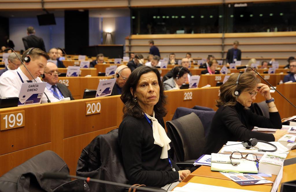 Madeira defende em Bruxelas continuidade do FSE, no período pós 2020