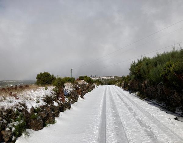 Apenas a ER 202 se encontra encerrada, neste momento, devido à neve