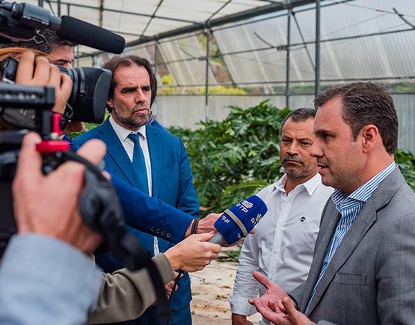 Rui Barreto e Miguel Albuquerque visitaram a maior exploração nacional de papaias
