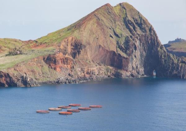 Aquacultura com apoio de 1 milhão do Fundo Europeu