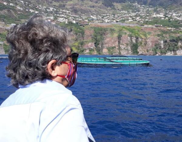 Ministro e secretário regional visitaram instalação de aquacultura na Calheta