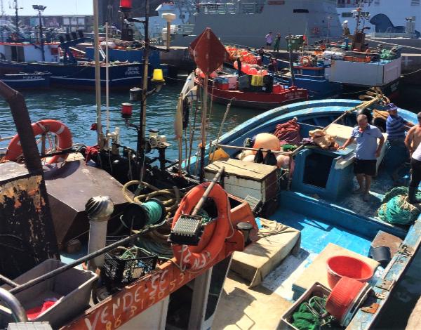 Prazo para candidaturas aos apoios no sector das pescas termina a 15 de junho