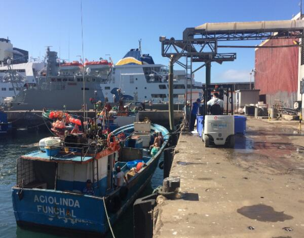 Setor das pescas com mais 1 milhão e 800 mil euros de apoio