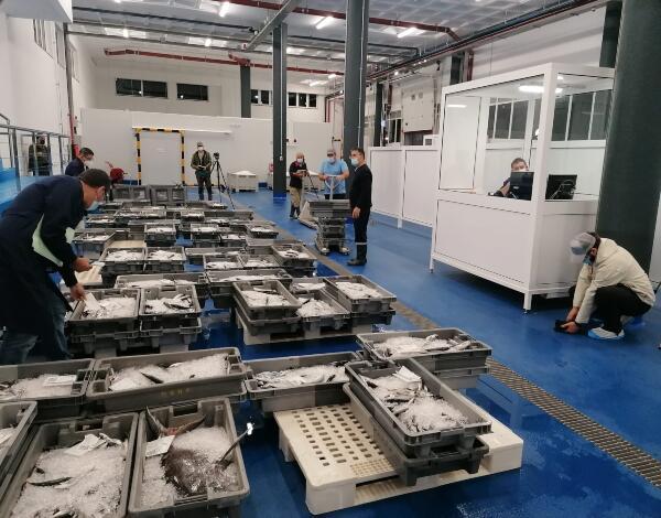 Equipa de produção espanhola na Rota do Peixe da Madeira