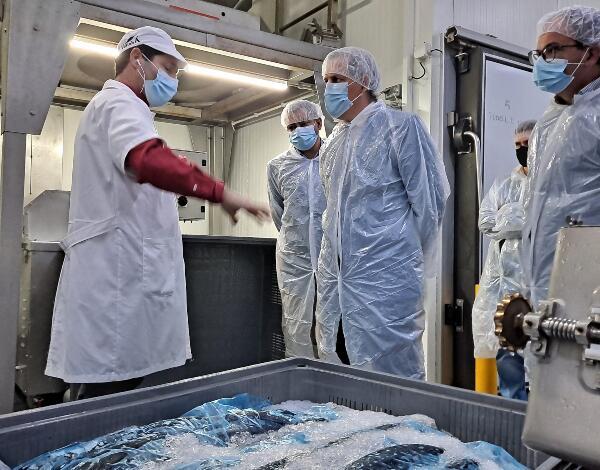 """Secretário de Mar e Pescas enaltece """"capacidade inovadora"""" das empresas da Região que operam no comércio e transformação do setor das pescas"""