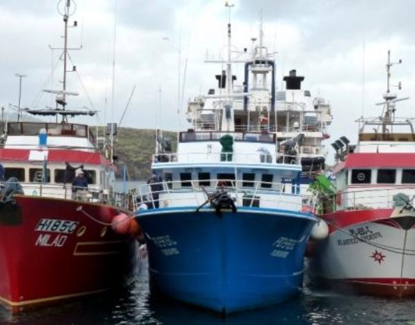 Mar e Pescas: 2020 será um ano crucial