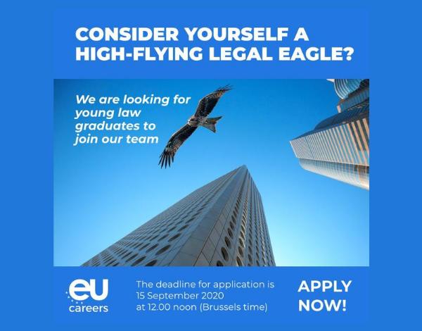 Tens formação superior em Direito e consideras ter um bom perfil de competências?