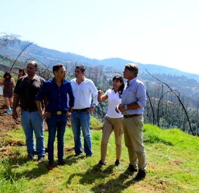 Limpeza de mais 8 hectares de floresta em São Roque