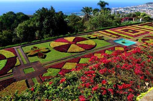 Jardim Botânico com o melhor ano de sempre