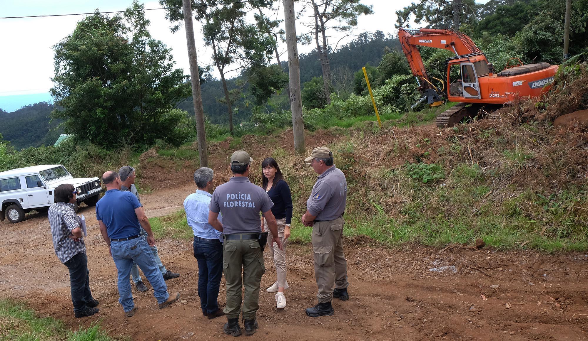 Governo limpa 150 km de caminhos florestais