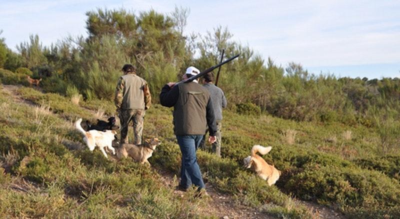 Governo já definiu calendário de caça