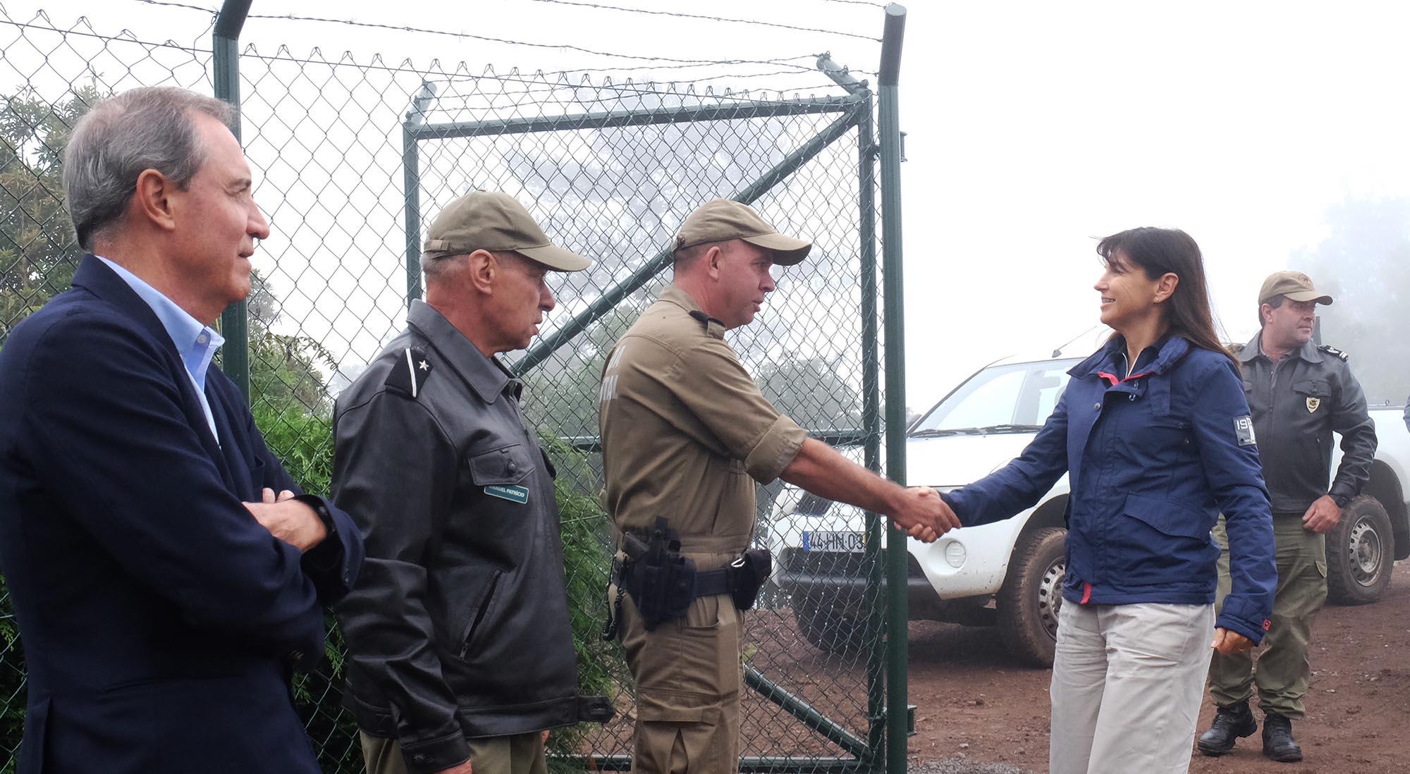 Governo inicia recuperação florestal em 400ha no Paul da Serra