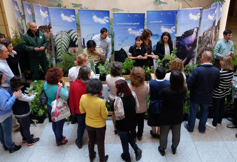 Secretaria do Ambiente oferece plantas indígenas e endémicas para celebrar Dia Internacional da Floresta