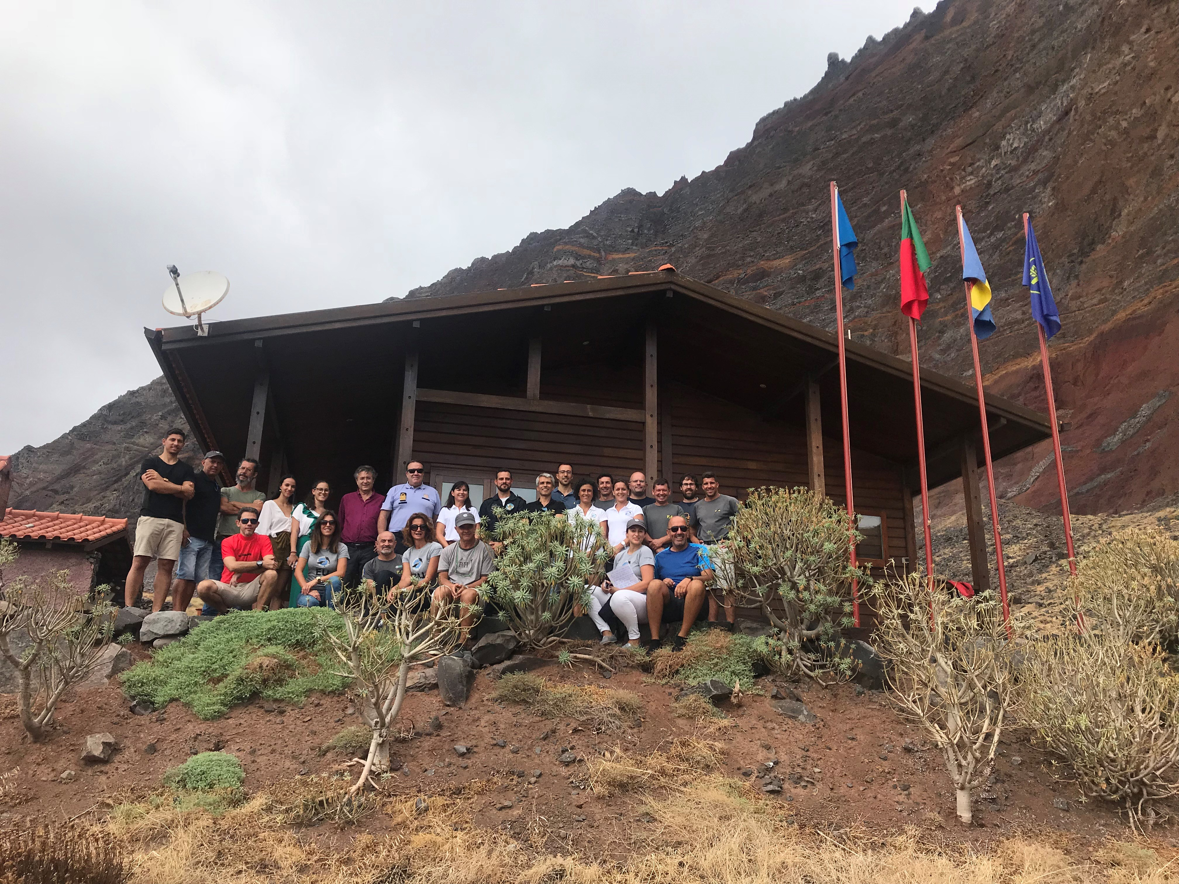 Colónia de lobos-marinhos na Madeira passou de seis para 30 exemplares em três décadas